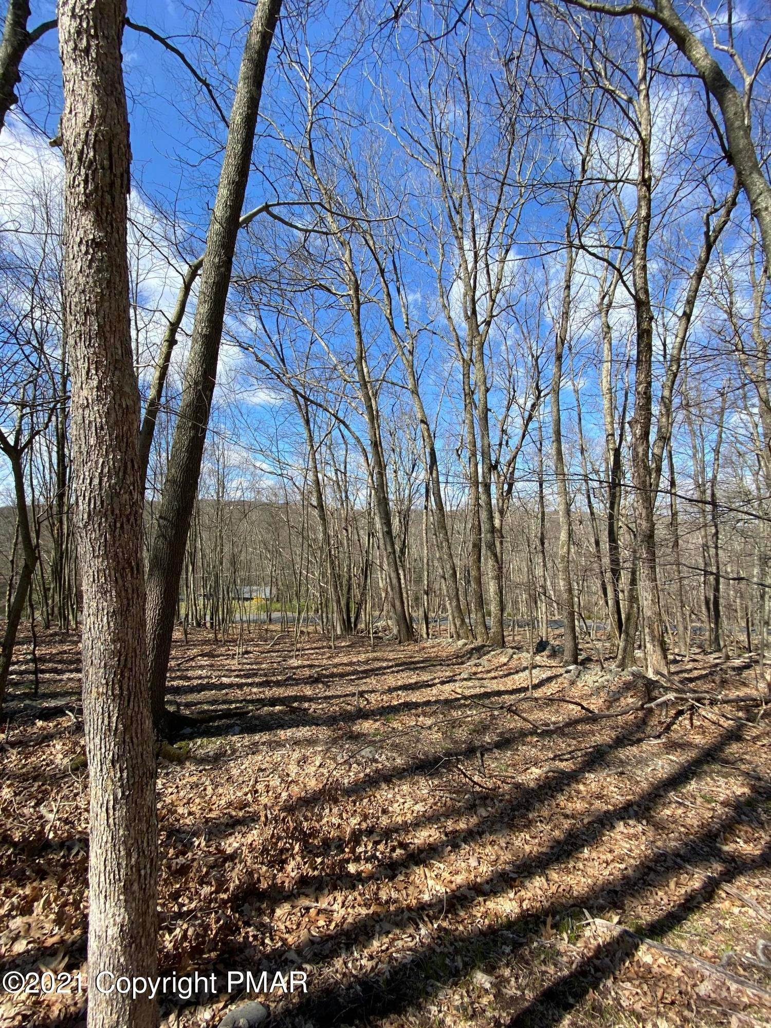 2. Land for Sale at 209 Sec 3f Meadow Lark Circle Bushkill, Pennsylvania 18324 United States