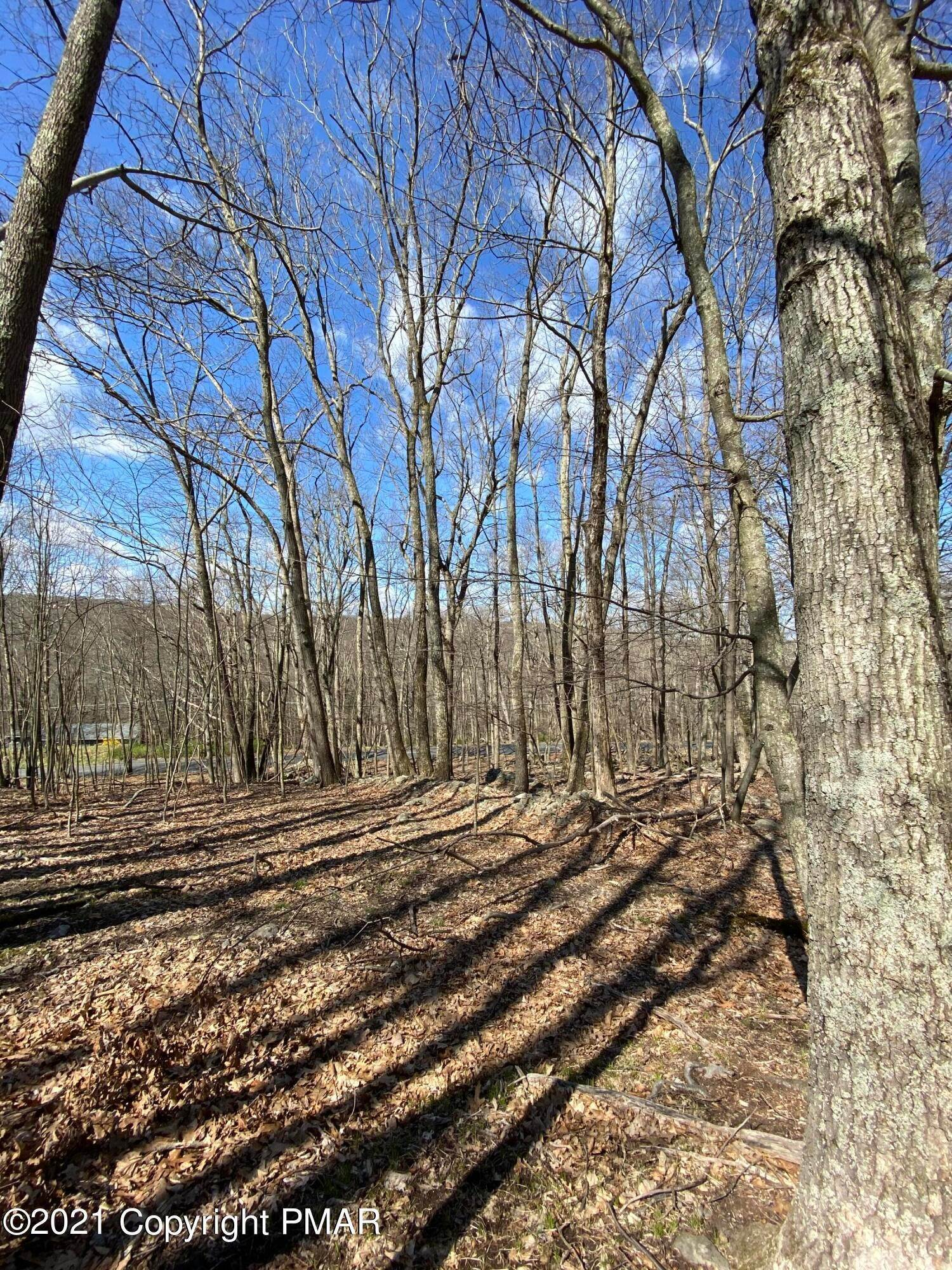 4. Land for Sale at 209 Sec 3f Meadow Lark Circle Bushkill, Pennsylvania 18324 United States