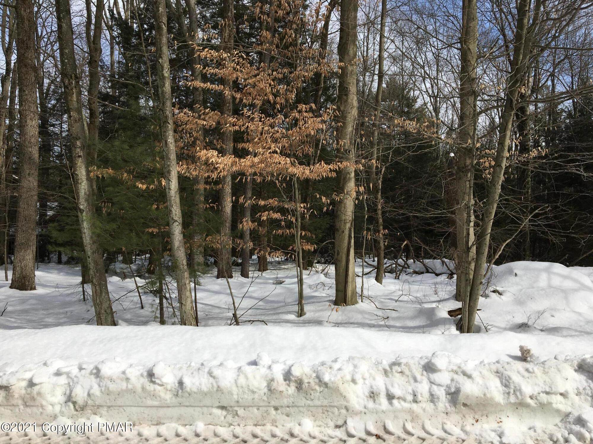 Land for Sale at 8 Foxglove Place Pocono Pines, Pennsylvania 18350 United States