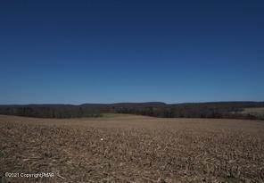 Land for Sale at 0 Pleasant Valley Road New Ringgold, Pennsylvania 17960 United States