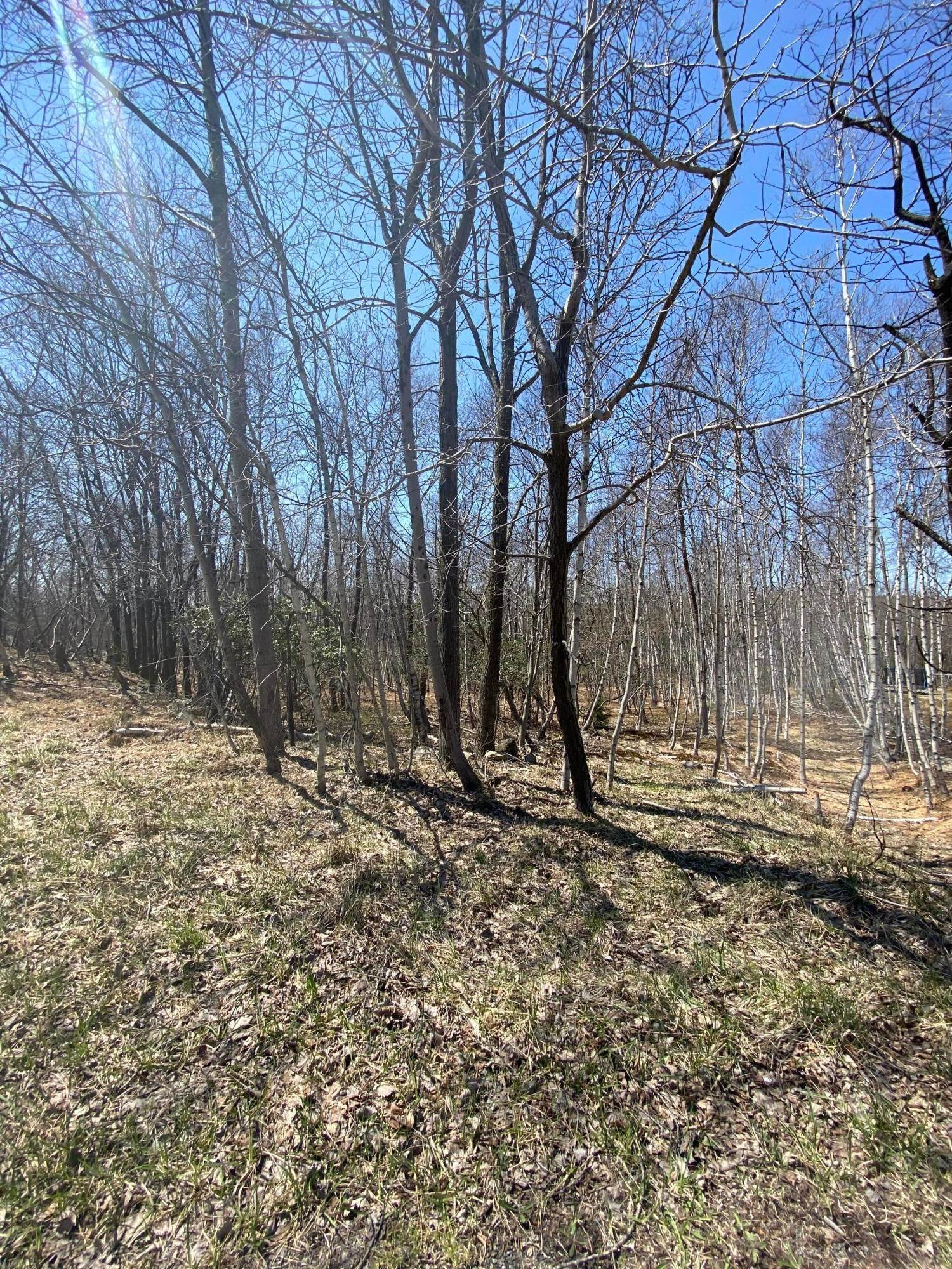 4. Land for Sale at Whispering Hills Ct Effort, Pennsylvania 18330 United States